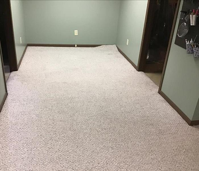 Carpeted floor after water extraction