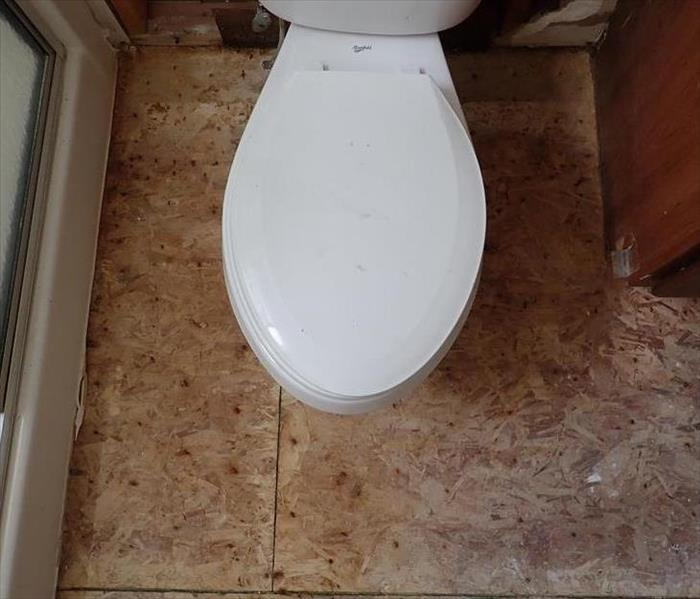 No longer mold on wood around toilet after remediation.