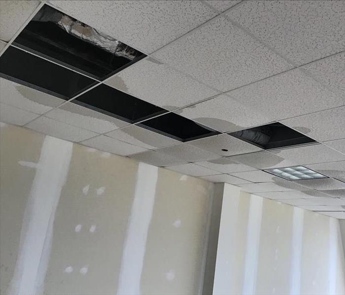 Water vs. Ceiling Tiles