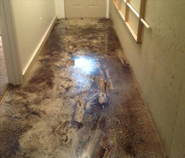 Ground Water & Mud Flooded into Residential Home after Storm