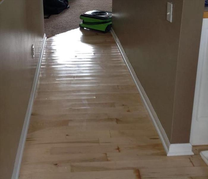 Refrigerator Water Line Leak causing Hardwood Floor Damage