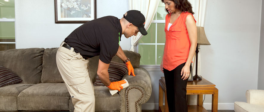 Muskegon, MI carpet upholstery cleaning