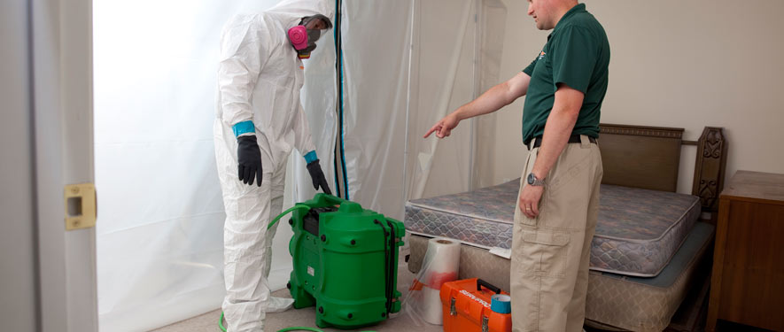 Muskegon, MI mold removal process
